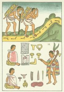 Social heirarchy aztec
