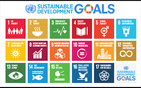 Seventeen sustainable development goals are no poverty; zero hunger; good health and well-being; quality education; gener equality; clean water and sanitation; affordable and clean energy; decent work and economic growth; industry, innovation and infrastructure; reduced inequalities; sustainable cities and communities; responsible consumption and production; climate action; life below water; life on land; peace, justice and strong institutions; partnerships for the goals.