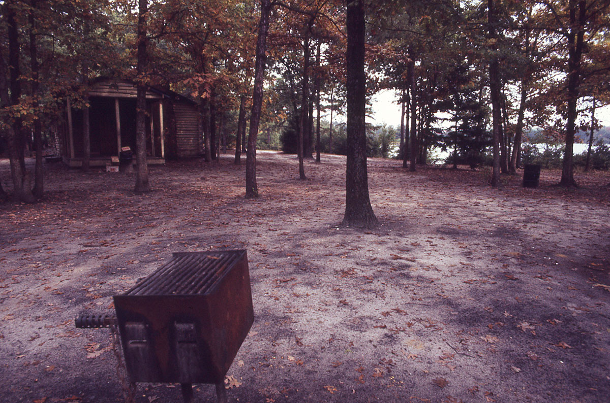 Cabin-in-Background-with-Grill