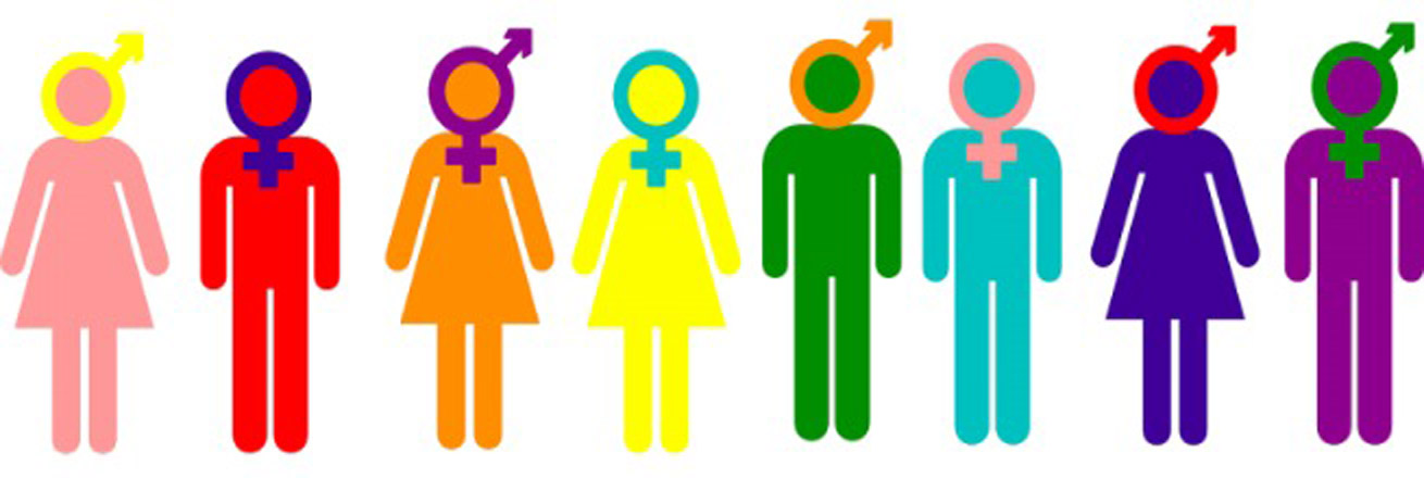 Women's, Gender and Sexuality Studies